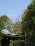 haru_hanadayori_h270331_01.jpg